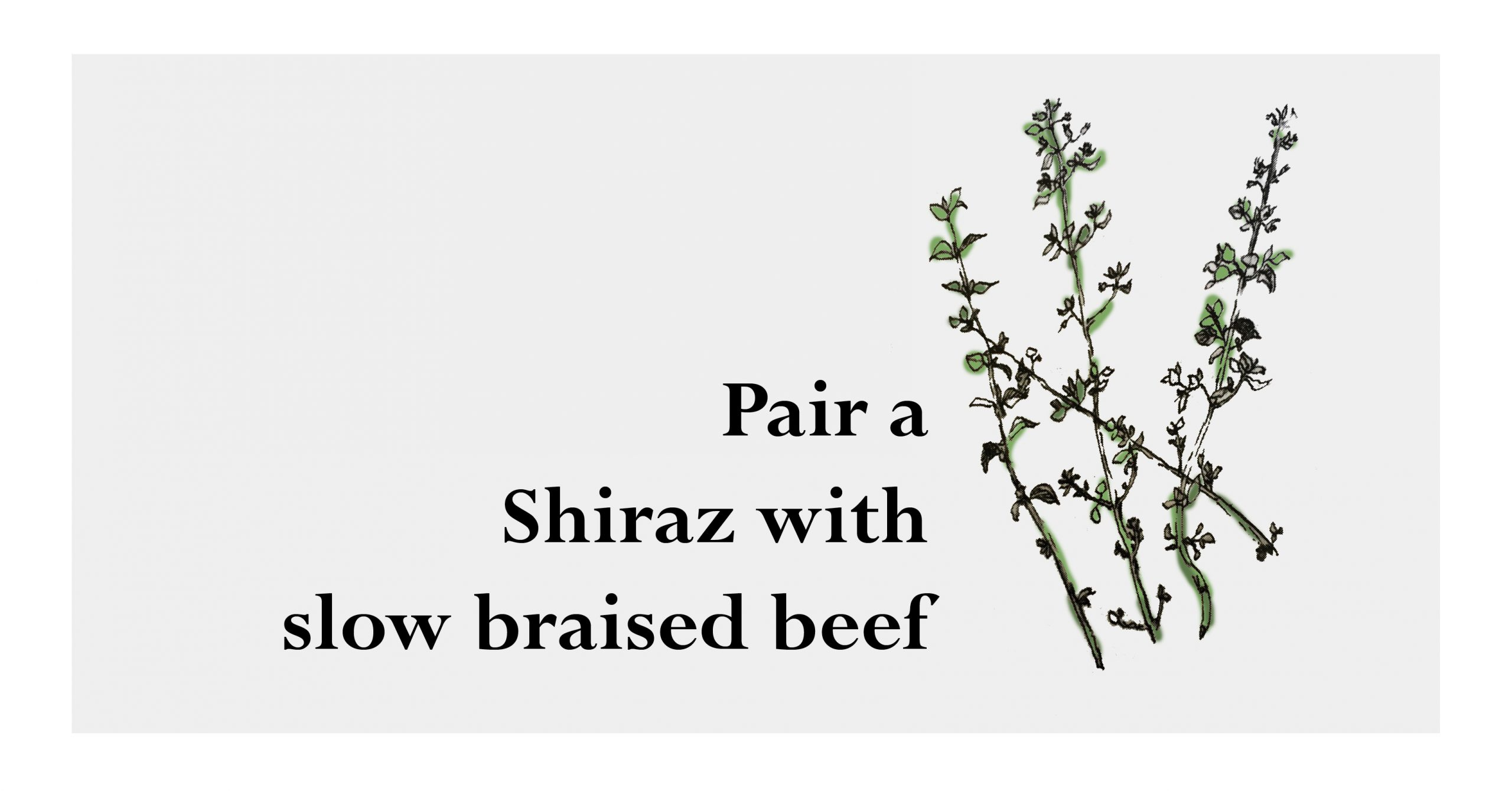 Slow braised beef and shiraz